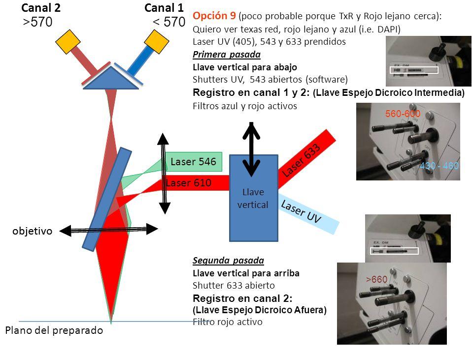Opción 9 (poco probable porque TxR y Rojo lejano cerca): Quiero ver texas red, rojo lejano y azul (i.e. DAPI) Laser UV (405), 543 y 633 prendidos Prim