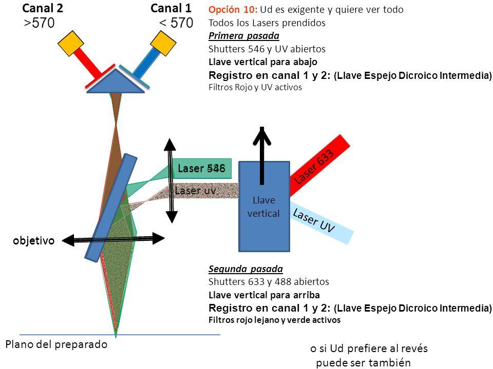 Laser 610 Laser 488 Laser 633 objetivo Llave vertical Opción 10: Ud es exigente y quiere ver todo Todos los Lasers prendidos Primera pasada Shutters 5