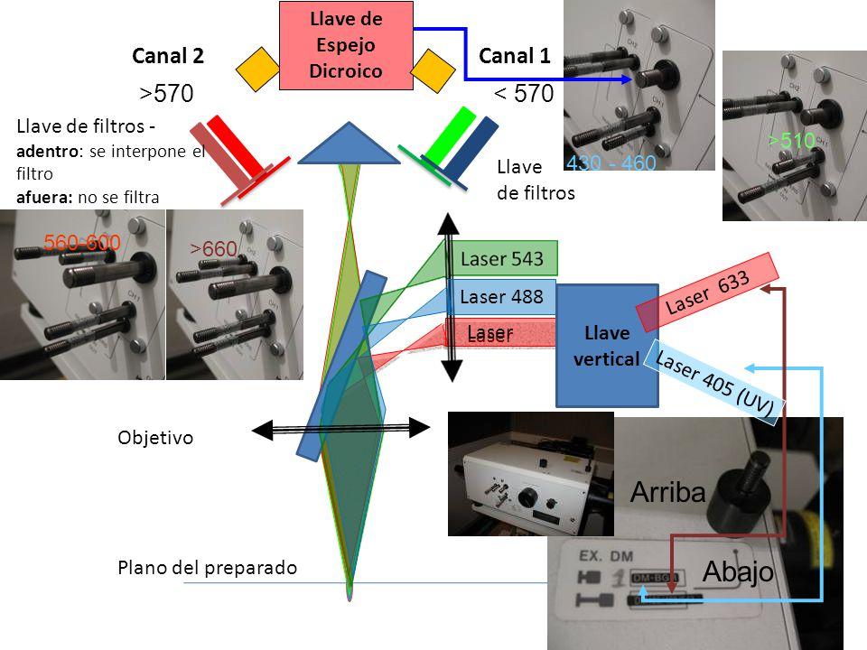 Laser Llave de filtros - adentro: se interpone el filtro afuera: no se filtra Llave de filtros Canal 2Canal 1 560-600 >660 430 - 460 >510 Llave de Esp
