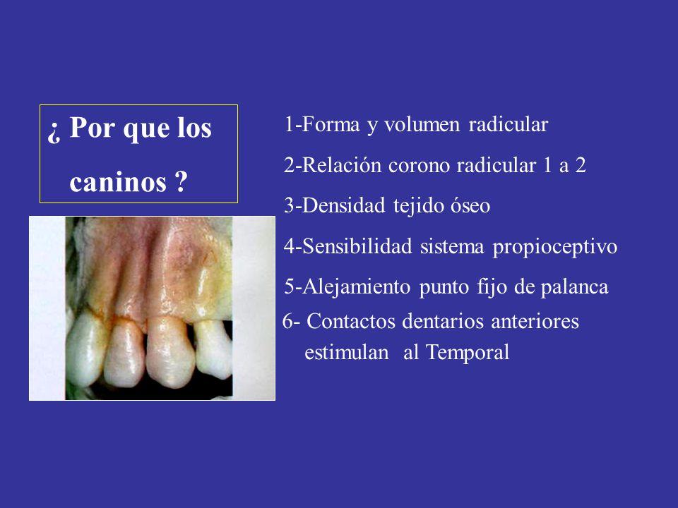 1-Forma y volumen radicular 2-Relación corono radicular 1 a 2 3-Densidad tejido óseo 4-Sensibilidad sistema propioceptivo 5-Alejamiento punto fijo de