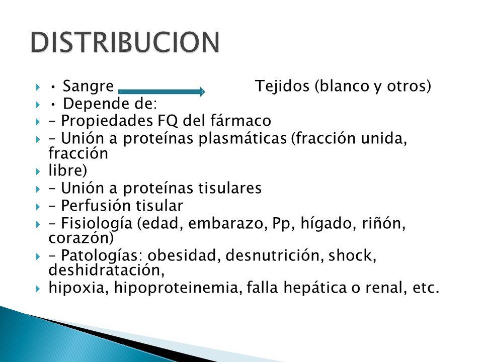 Sangre Tejidos (blanco y otros) Depende de: – Propiedades FQ del fármaco – Unión a proteínas plasmáticas (fracción unida, fracción libre) – Unión a pr