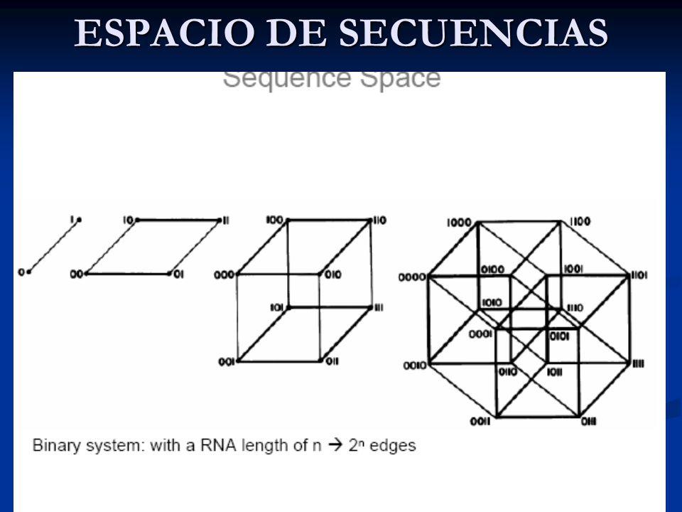ESPACIO DE SECUENCIAS Genoma = secuencia de un alfabeto de 4 letras: A, T, C y G Genoma = secuencia de un alfabeto de 4 letras: A, T, C y G Supongamos un virus ARN con L=5.000, entonces el numero de genomas posibles es 4 5.000 = 2 10.000 10 3.300 Supongamos un virus ARN con L=5.000, entonces el numero de genomas posibles es 4 5.000 = 2 10.000 10 3.300 (el número de protones en el Universo es del orden de 10 80 .