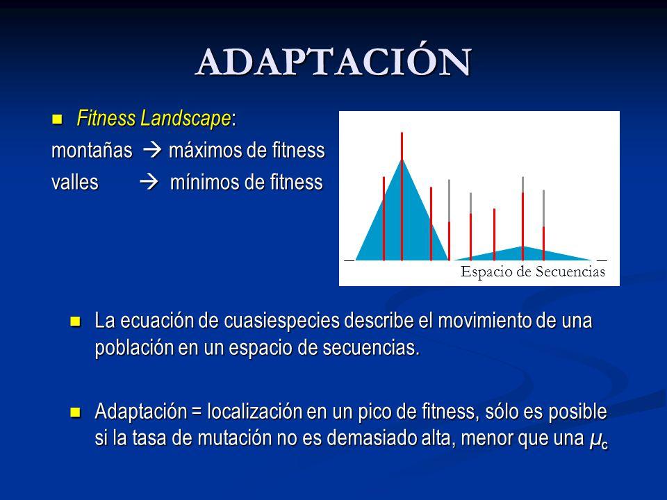 ADAPTACIÓN Fitness Landscape : Fitness Landscape : montañas máximos de fitness valles mínimos de fitness Espacio de Secuencias La ecuación de cuasiespecies describe el movimiento de una población en un espacio de secuencias.