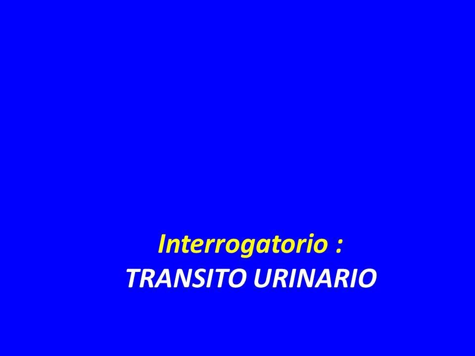 Interrogatorio : TRANSITO URINARIO
