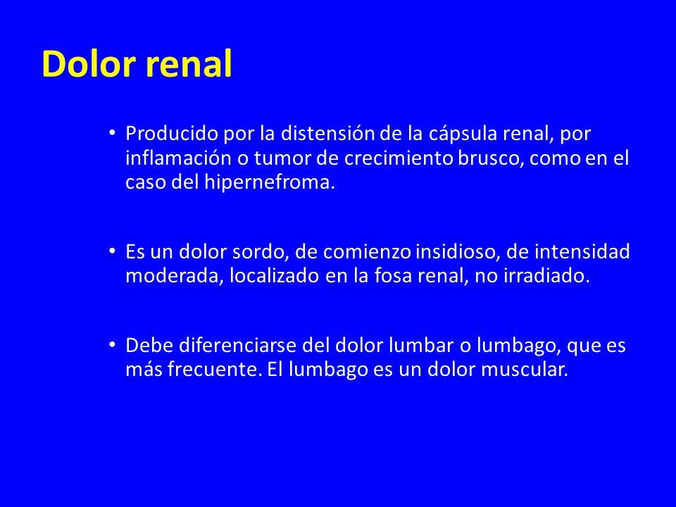 Dolor renal Producido por la distensión de la cápsula renal, por inflamación o tumor de crecimiento brusco, como en el caso del hipernefroma.