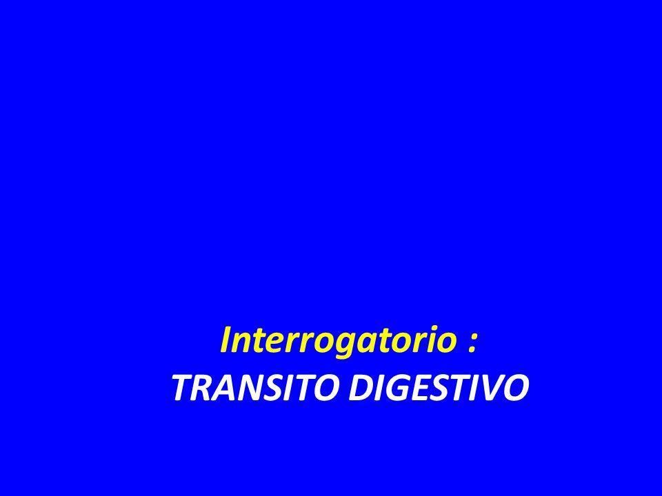 Interrogatorio : TRANSITO DIGESTIVO