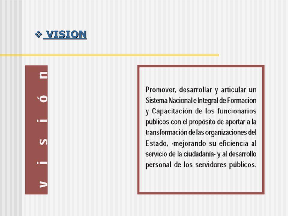 VISION VISION