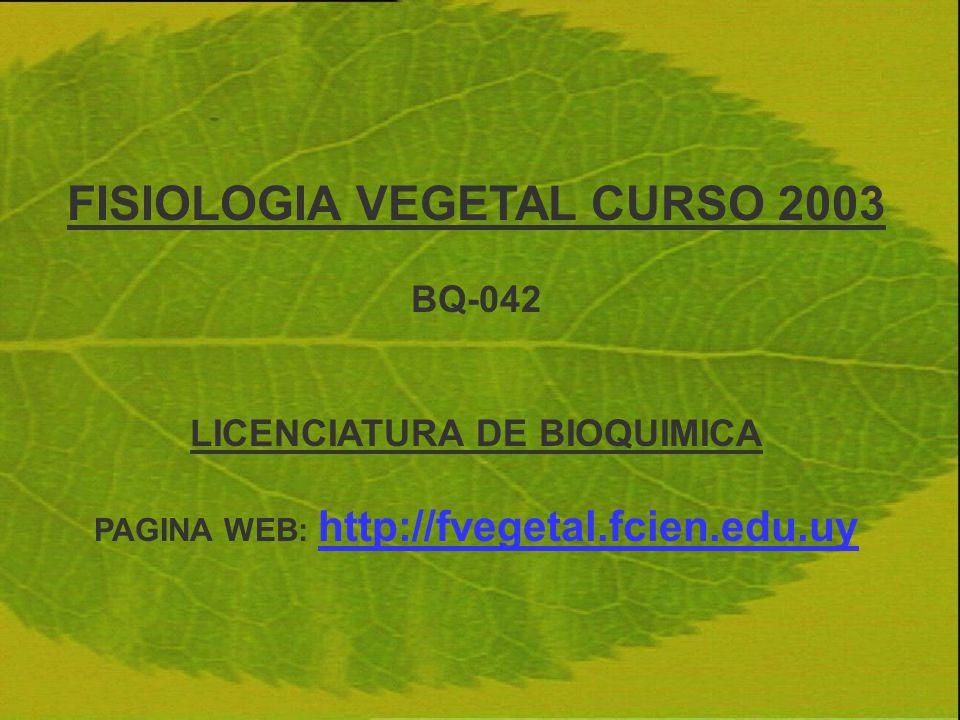 FISIOLOGIA VEGETAL CURSO 2003 BQ-042 LICENCIATURA DE BIOQUIMICA PAGINA WEB: http://fvegetal.fcien.edu.uy