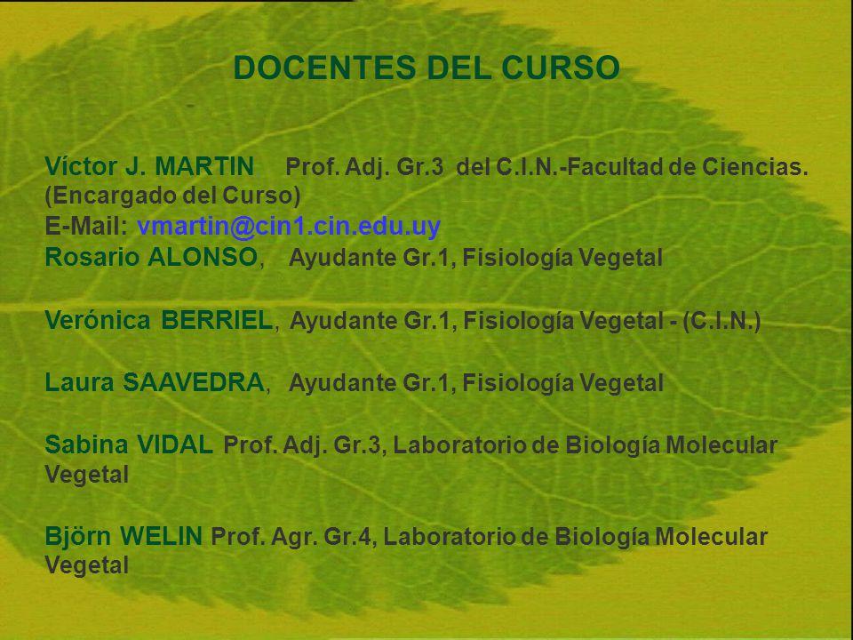 DOCENTES DEL CURSO Víctor J. MARTIN, Prof. Adj. Gr.3 del C.I.N.-Facultad de Ciencias. (Encargado del Curso) E-Mail: vmartin@cin1.cin.edu.uy Rosario AL