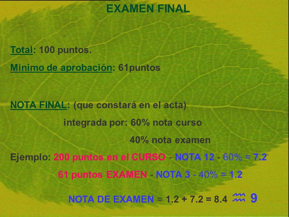 EXAMEN FINAL Total: 100 puntos. Mínimo de aprobación: 61puntos NOTA FINAL: (que constará en el acta) integrada por: 60% nota curso 40% nota examen Eje