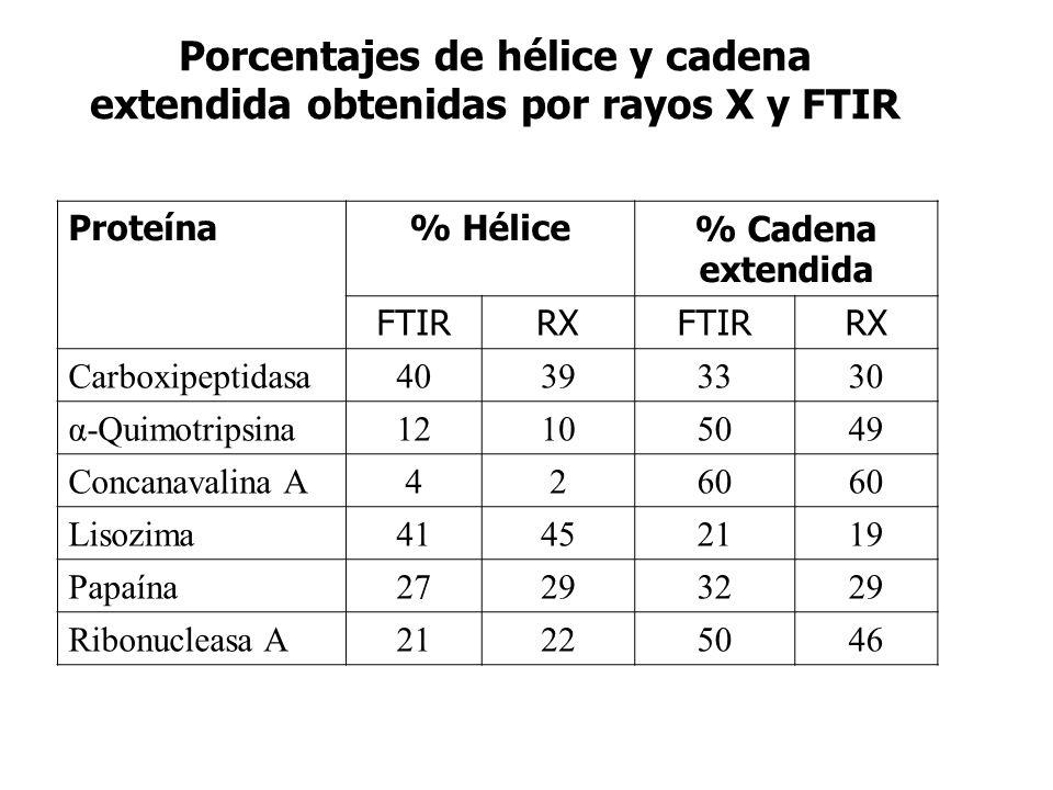 Porcentajes de hélice y cadena extendida obtenidas por rayos X y FTIR Proteína% Hélice% Cadena extendida FTIRRXFTIRRX Carboxipeptidasa40393330 α-Quimo