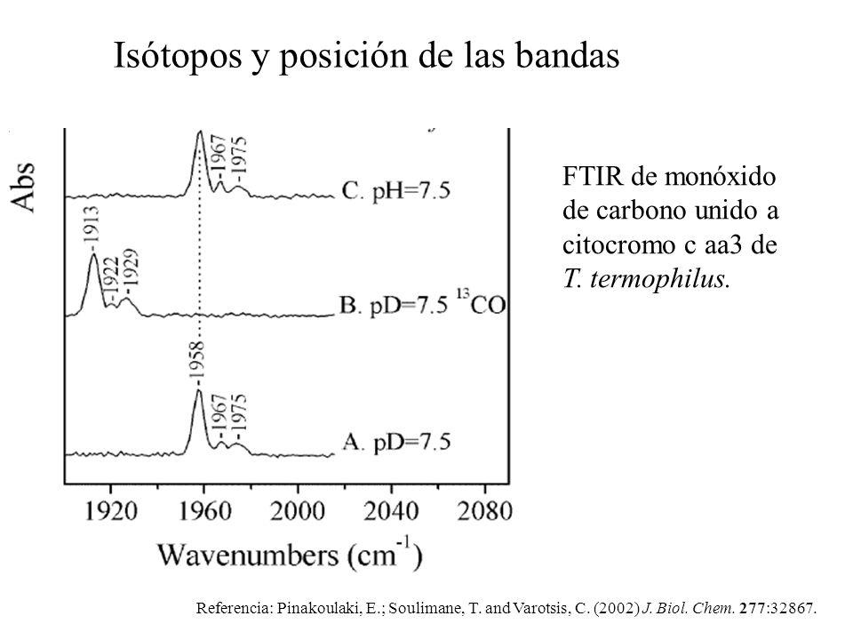 FTIR de monóxido de carbono unido a citocromo c aa3 de T. termophilus. Referencia: Pinakoulaki, E.; Soulimane, T. and Varotsis, C. (2002) J. Biol. Che