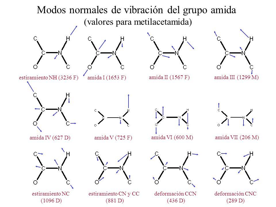 CN C HC O estiramiento NH (3236 F)amida I (1653 F) amida II (1567 F)amida III (1299 M) amida IV (627 D)amida V (725 F) estiramiento NC (1096 D) estira