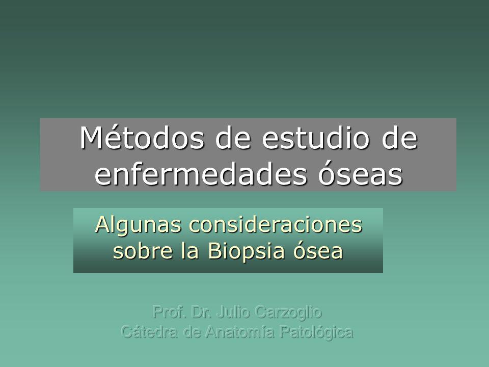 Métodos de estudio de enfermedades óseas Algunas consideraciones sobre la Biopsia ósea