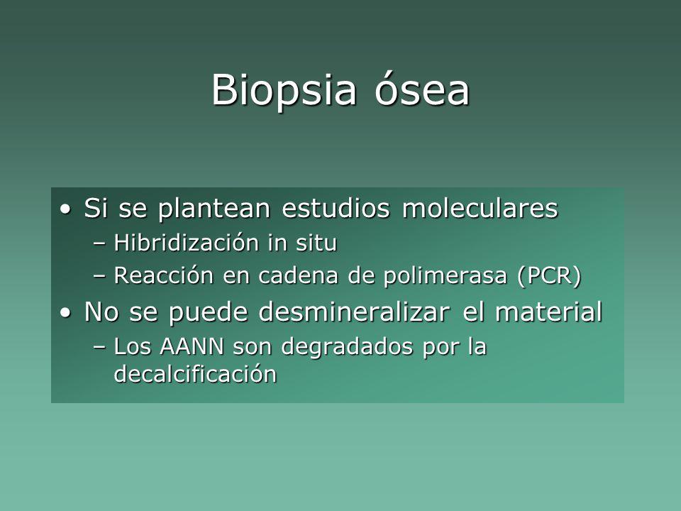 Biopsia ósea Si se plantean estudios molecularesSi se plantean estudios moleculares –Hibridización in situ –Reacción en cadena de polimerasa (PCR) No se puede desmineralizar el materialNo se puede desmineralizar el material –Los AANN son degradados por la decalcificación