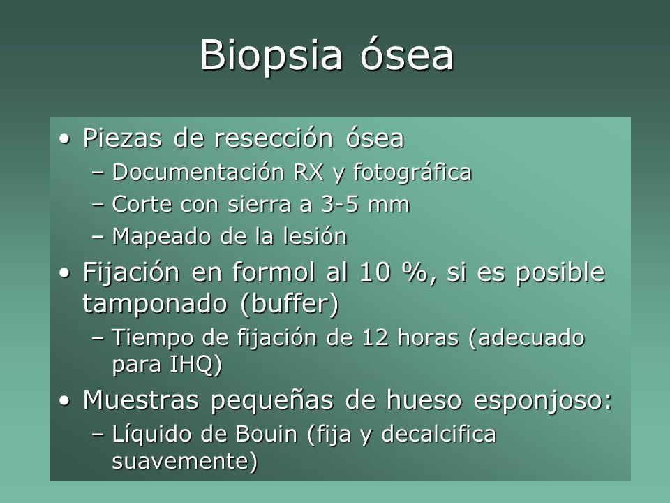 Biopsia ósea Piezas de resección óseaPiezas de resección ósea –Documentación RX y fotográfica –Corte con sierra a 3-5 mm –Mapeado de la lesión Fijación en formol al 10 %, si es posible tamponado (buffer)Fijación en formol al 10 %, si es posible tamponado (buffer) –Tiempo de fijación de 12 horas (adecuado para IHQ) Muestras pequeñas de hueso esponjoso:Muestras pequeñas de hueso esponjoso: –Líquido de Bouin (fija y decalcifica suavemente)