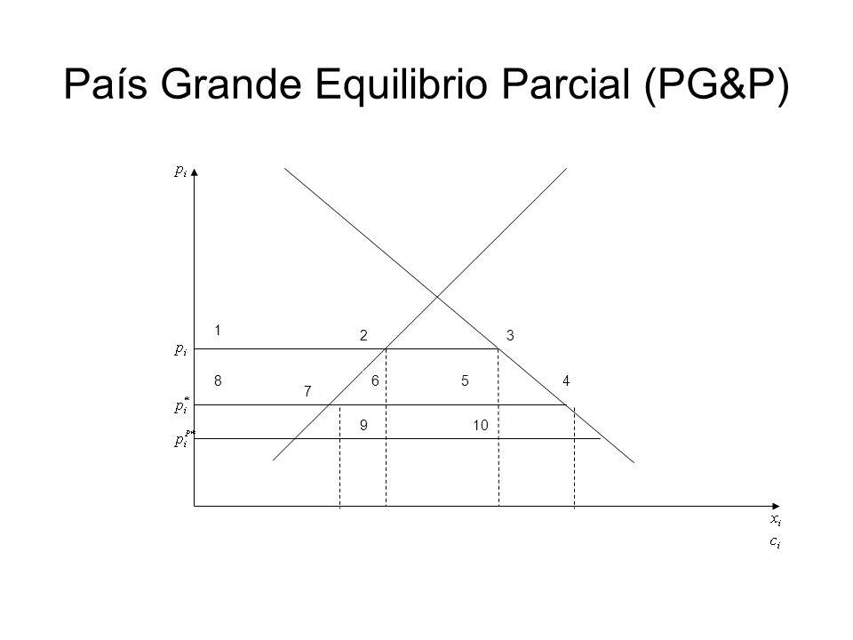 País Grande Equilibrio Parcial (PG&P) 1 23 456 7 8 910