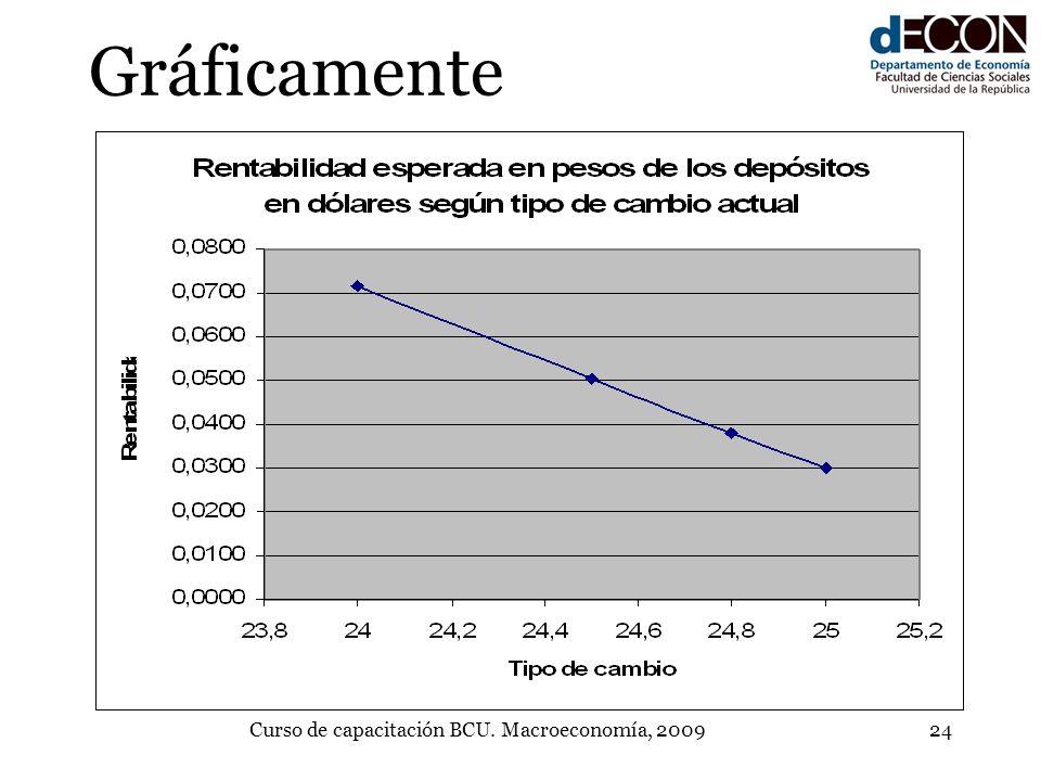 Curso de capacitación BCU. Macroeconomía, 200924 Gráficamente