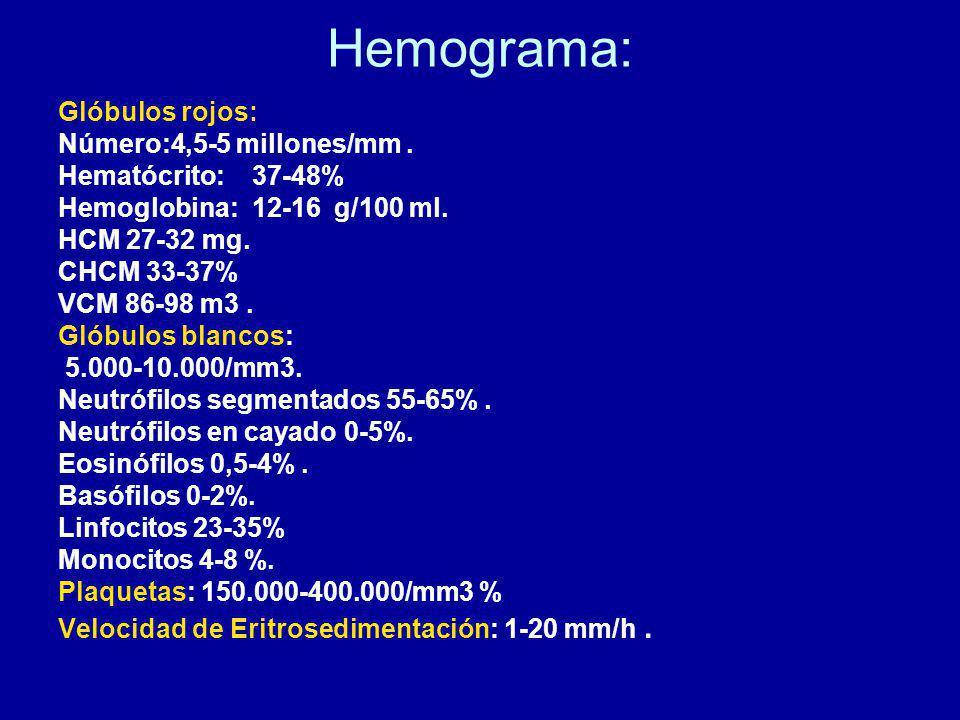 Hemograma: Glóbulos rojos: Número:4,5-5 millones/mm.