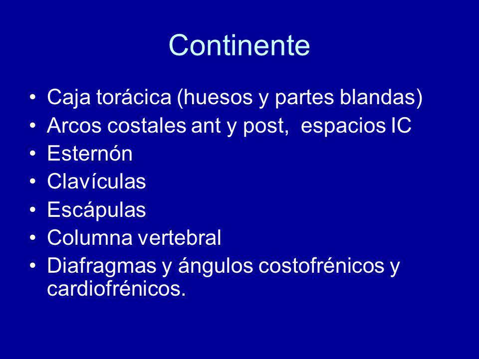 Continente Caja torácica (huesos y partes blandas) Arcos costales ant y post, espacios IC Esternón Clavículas Escápulas Columna vertebral Diafragmas y ángulos costofrénicos y cardiofrénicos.