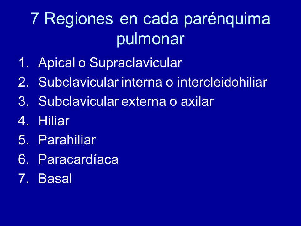 7 Regiones en cada parénquima pulmonar 1.Apical o Supraclavicular 2.Subclavicular interna o intercleidohiliar 3.Subclavicular externa o axilar 4.Hiliar 5.Parahiliar 6.Paracardíaca 7.Basal