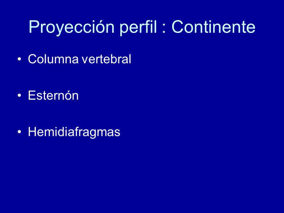 Proyección perfil : Continente Columna vertebral Esternón Hemidiafragmas
