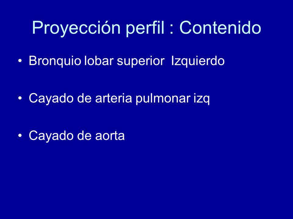 Proyección perfil : Contenido Bronquio lobar superior Izquierdo Cayado de arteria pulmonar izq Cayado de aorta