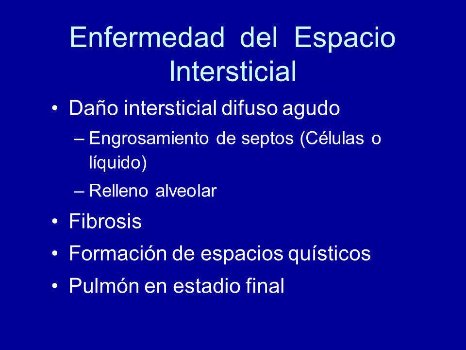 Enfermedad del Espacio Intersticial Daño intersticial difuso agudo –Engrosamiento de septos (Células o líquido) –Relleno alveolar Fibrosis Formación de espacios quísticos Pulmón en estadio final