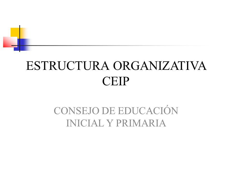 ESTRUCTURA ORGANIZATIVA CEIP CONSEJO DE EDUCACIÓN INICIAL Y PRIMARIA