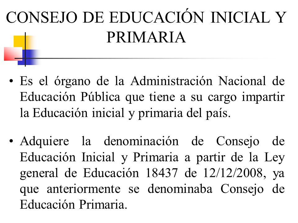 Es el órgano de la Administración Nacional de Educación Pública que tiene a su cargo impartir la Educación inicial y primaria del país. Adquiere la de