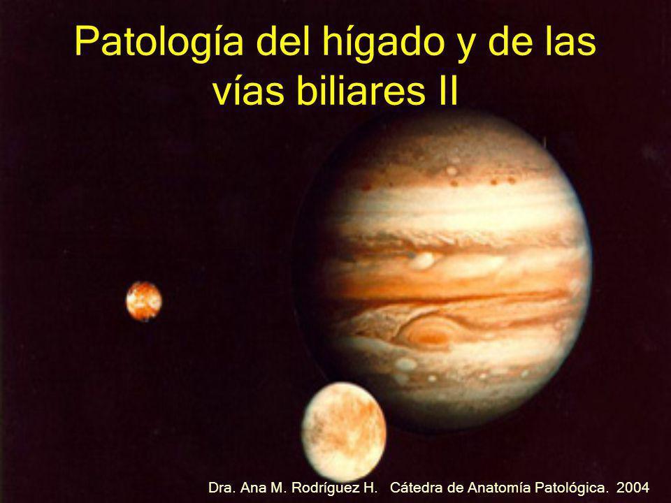 Patología del hígado y de las vías biliares II Dra. Ana M. Rodríguez H. Cátedra de Anatomía Patológica. 2004