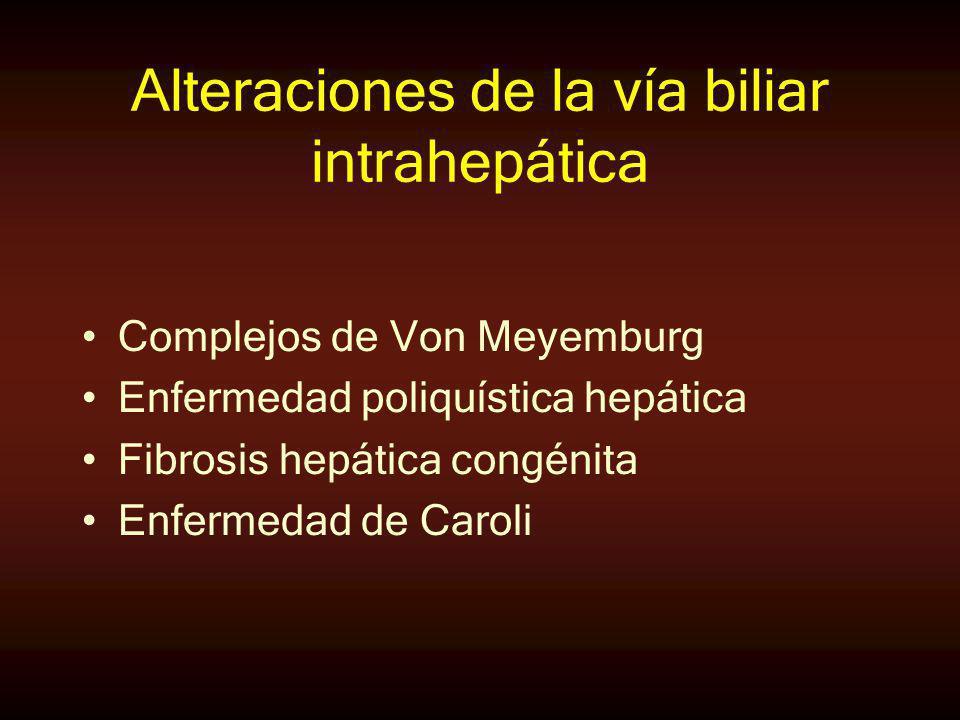 Alteraciones de la vía biliar intrahepática Complejos de Von Meyemburg Enfermedad poliquística hepática Fibrosis hepática congénita Enfermedad de Caro