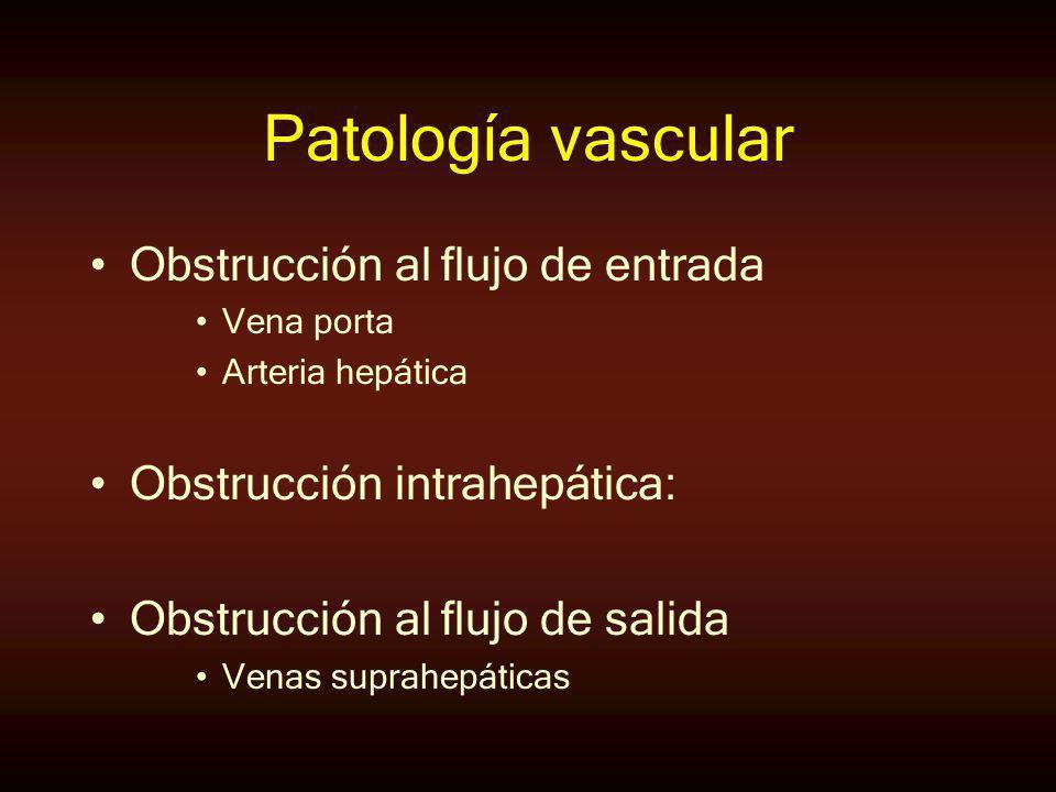 Patología vascular Obstrucción al flujo de entrada Vena porta Arteria hepática Obstrucción intrahepática: Obstrucción al flujo de salida Venas suprahe