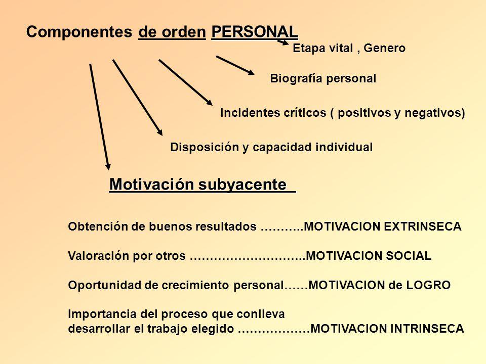 PERSONAL Componentes de orden PERSONAL Etapa vital, Genero Biografía personal Incidentes críticos ( positivos y negativos) Disposición y capacidad ind