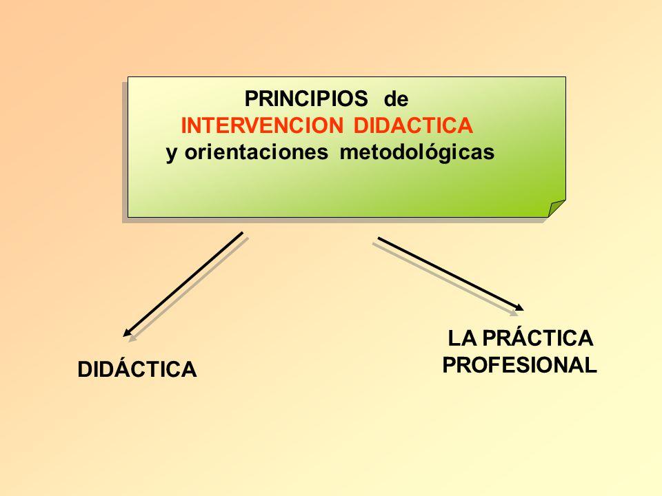 PRINCIPIOS de INTERVENCION DIDACTICA y orientaciones metodológicas DIDÁCTICA LA PRÁCTICA PROFESIONAL