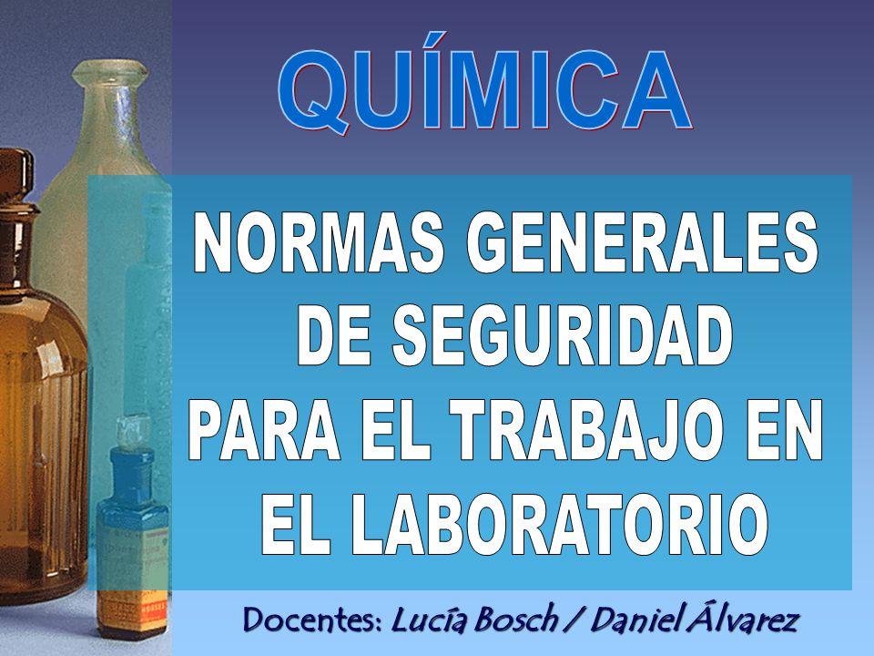 Docentes: Lucía Bosch / Daniel Álvarez