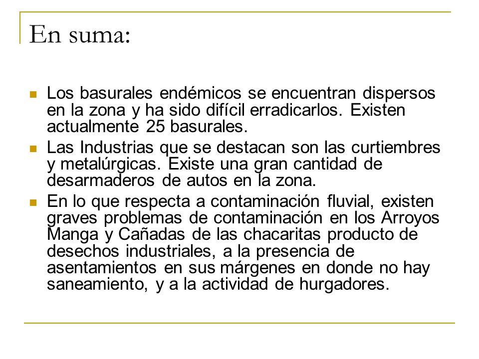 En suma: Los basurales endémicos se encuentran dispersos en la zona y ha sido difícil erradicarlos. Existen actualmente 25 basurales. Las Industrias q