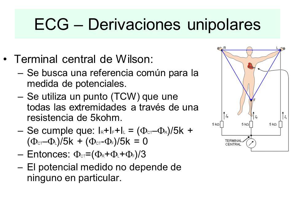 Terminal central de Wilson: –Se busca una referencia común para la medida de potenciales. –Se utiliza un punto (TCW) que une todas las extremidades a