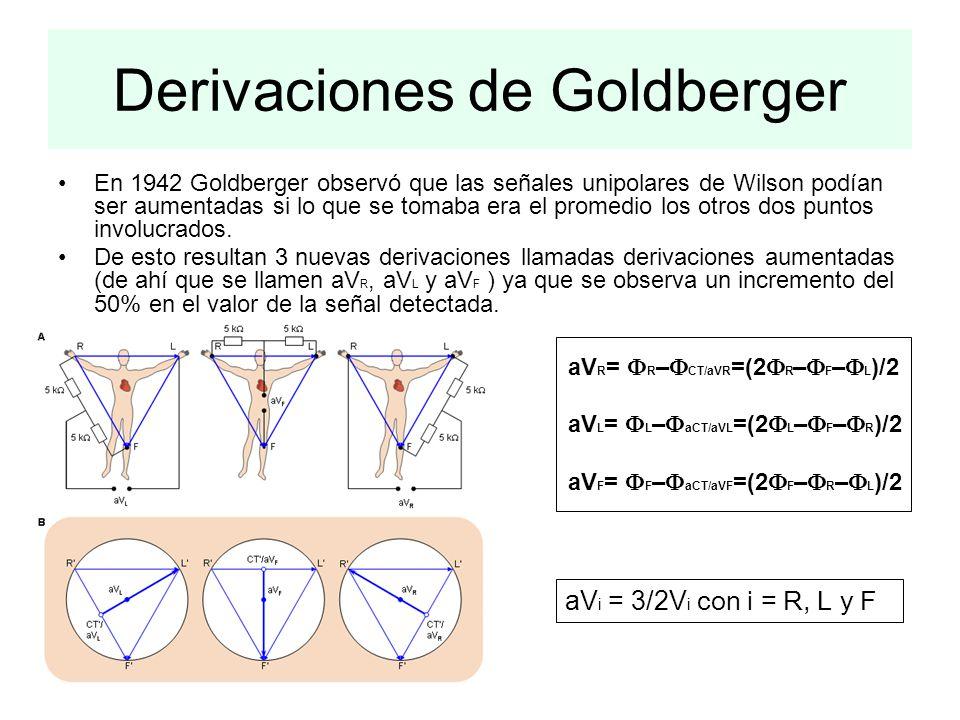 Derivaciones de Goldberger En 1942 Goldberger observó que las señales unipolares de Wilson podían ser aumentadas si lo que se tomaba era el promedio l