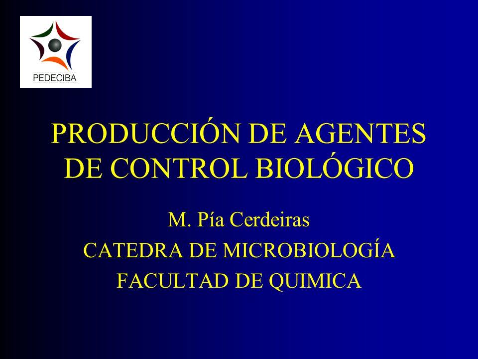 PRODUCCIÓN DE AGENTES DE CONTROL BIOLÓGICO M. Pía Cerdeiras CATEDRA DE MICROBIOLOGÍA FACULTAD DE QUIMICA