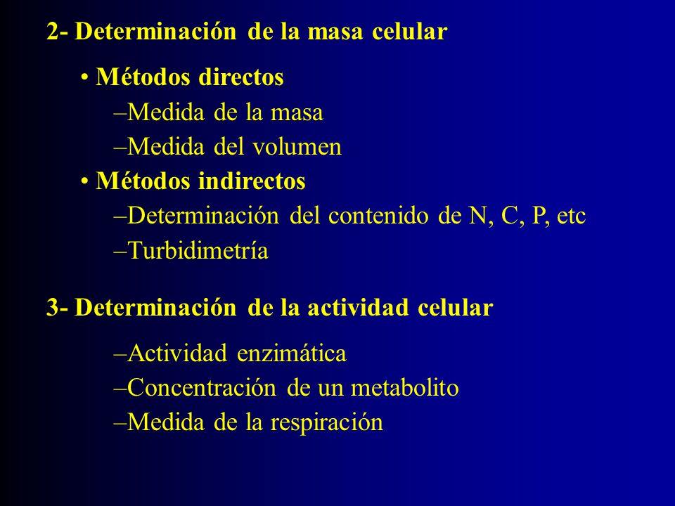 2- Determinación de la masa celular Métodos directos –Medida de la masa –Medida del volumen Métodos indirectos –Determinación del contenido de N, C, P