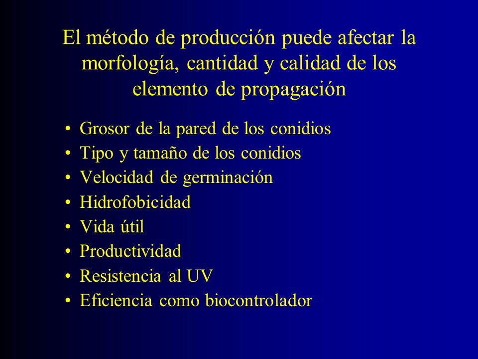 El método de producción puede afectar la morfología, cantidad y calidad de los elemento de propagación Grosor de la pared de los conidios Tipo y tamañ