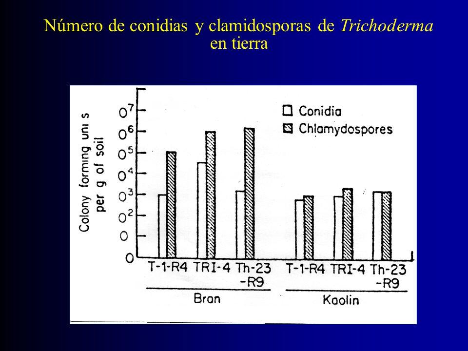Número de conidias y clamidosporas de Trichoderma en tierra