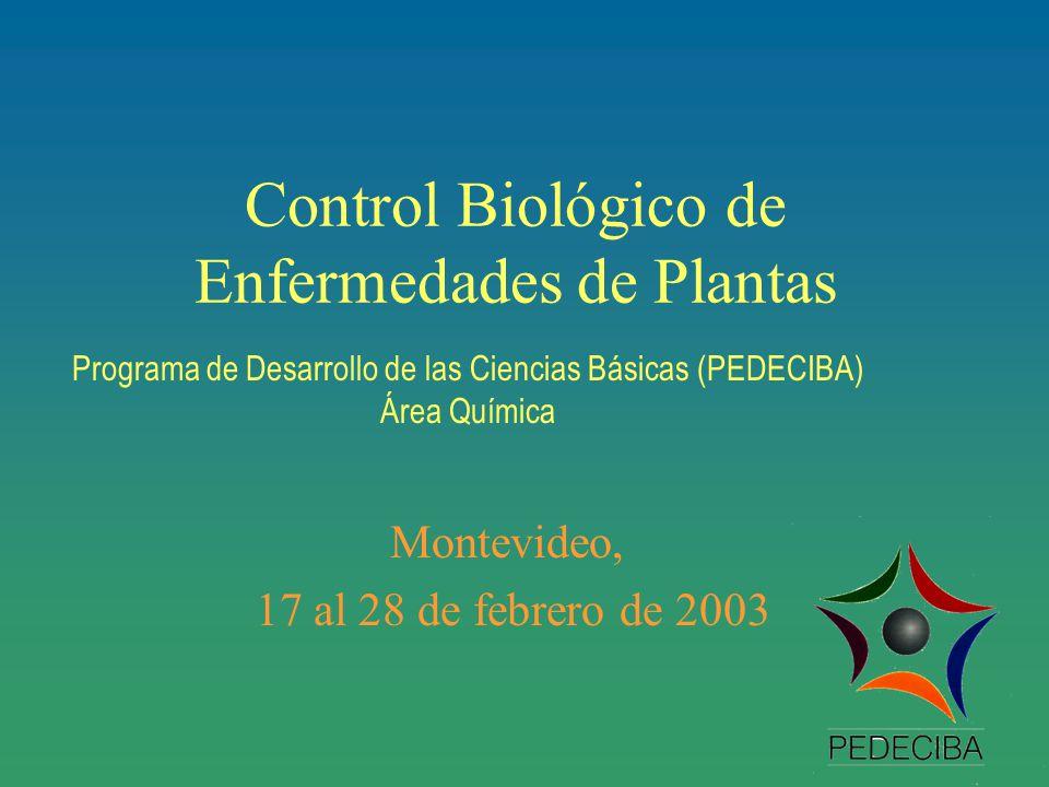Control Biológico de Enfermedades de Plantas Montevideo, 17 al 28 de febrero de 2003 Programa de Desarrollo de las Ciencias Básicas (PEDECIBA) Área Química