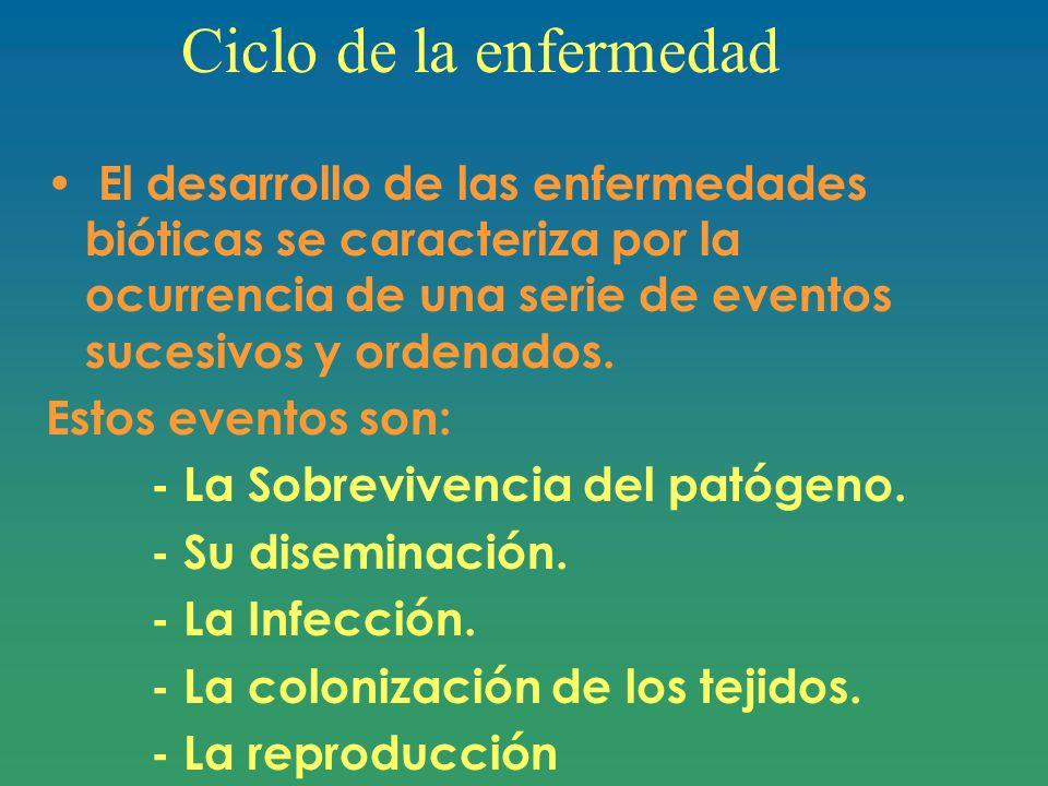 Ciclo de la enfermedad El desarrollo de las enfermedades bióticas se caracteriza por la ocurrencia de una serie de eventos sucesivos y ordenados.