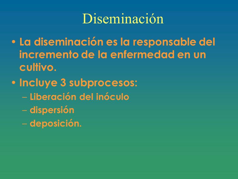 Diseminación La diseminación es la responsable del incremento de la enfermedad en un cultivo.