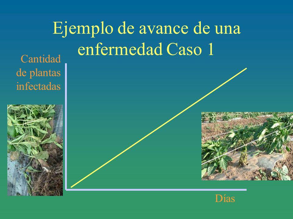 Cantidad de plantas infectadas Días Ejemplo de avance de una enfermedad Caso 1