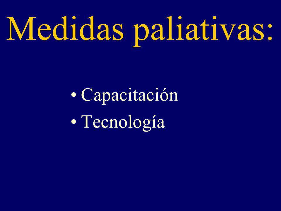 Medidas paliativas: Capacitación Tecnología