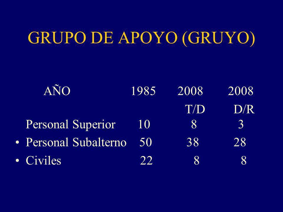 GRUPO DE APOYO (GRUYO) AÑO 1985 2008 2008 T/D D/R Personal Superior 10 8 3 Personal Subalterno 50 38 28 Civiles 22 8 8