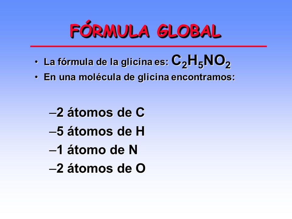 FÓRMULA GLOBAL La fórmula de la glicina es: C 2 H 5 NO 2La fórmula de la glicina es: C 2 H 5 NO 2 En una molécula de glicina encontramos:En una molécula de glicina encontramos: –2 átomos de C –5 átomos de H –1 átomo de N –2 átomos de O